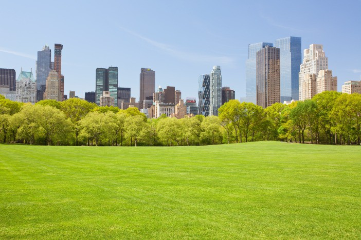 Afbeelding van Central Park In New York 6UW9WPK