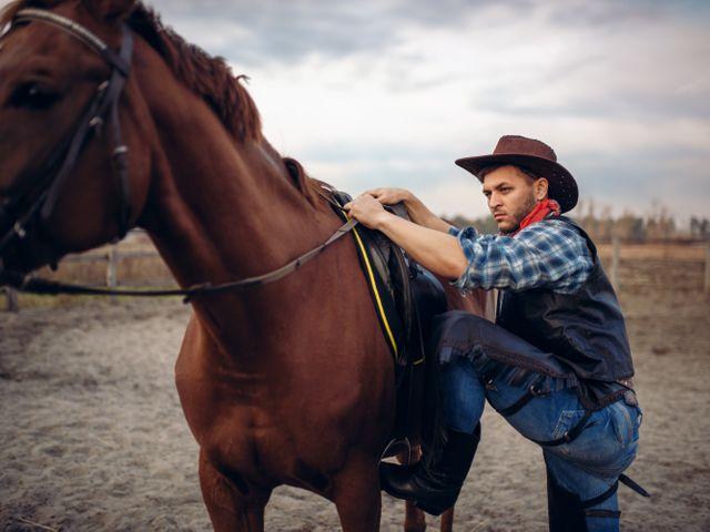 Cowboy, Texas Wild West