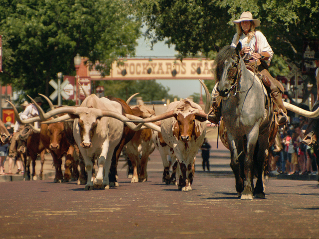 Stockyards, Fort Worth, Texas