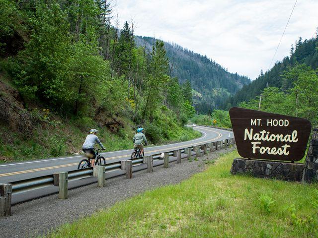 Mt Hood National Forest , Oregon