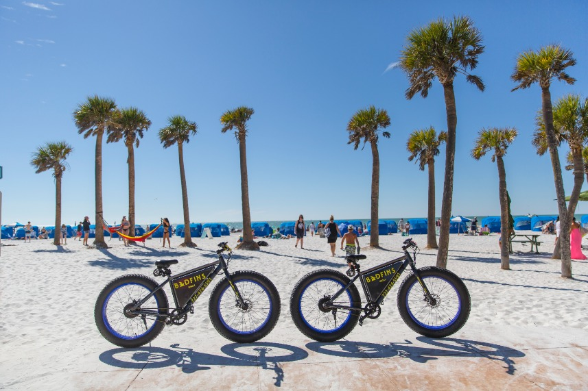 Bikes And Palm Trees On Clearwater Beach