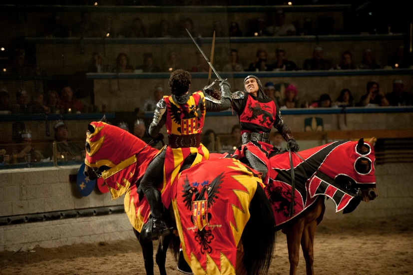 Dinner Shows  Medieval Times