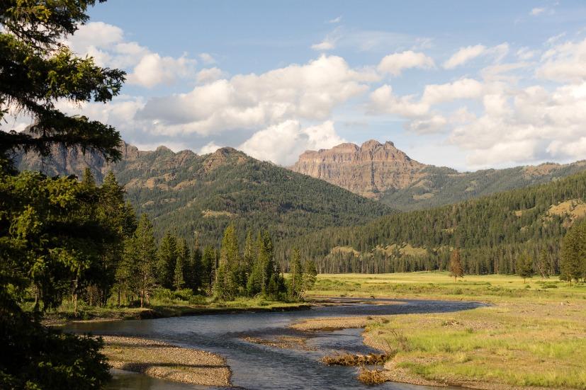 Lamer River Flows Through Valley Yellowstone