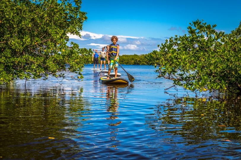 Paddle Board Sanibel Marina