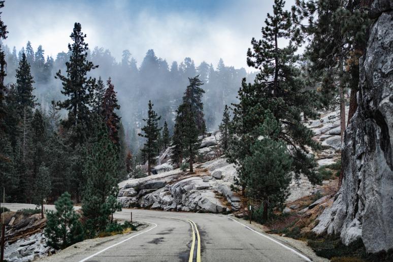 Bochtige weg Sequoia National Park
