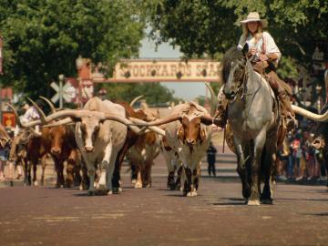 Fort Worth Stockyards Historic District